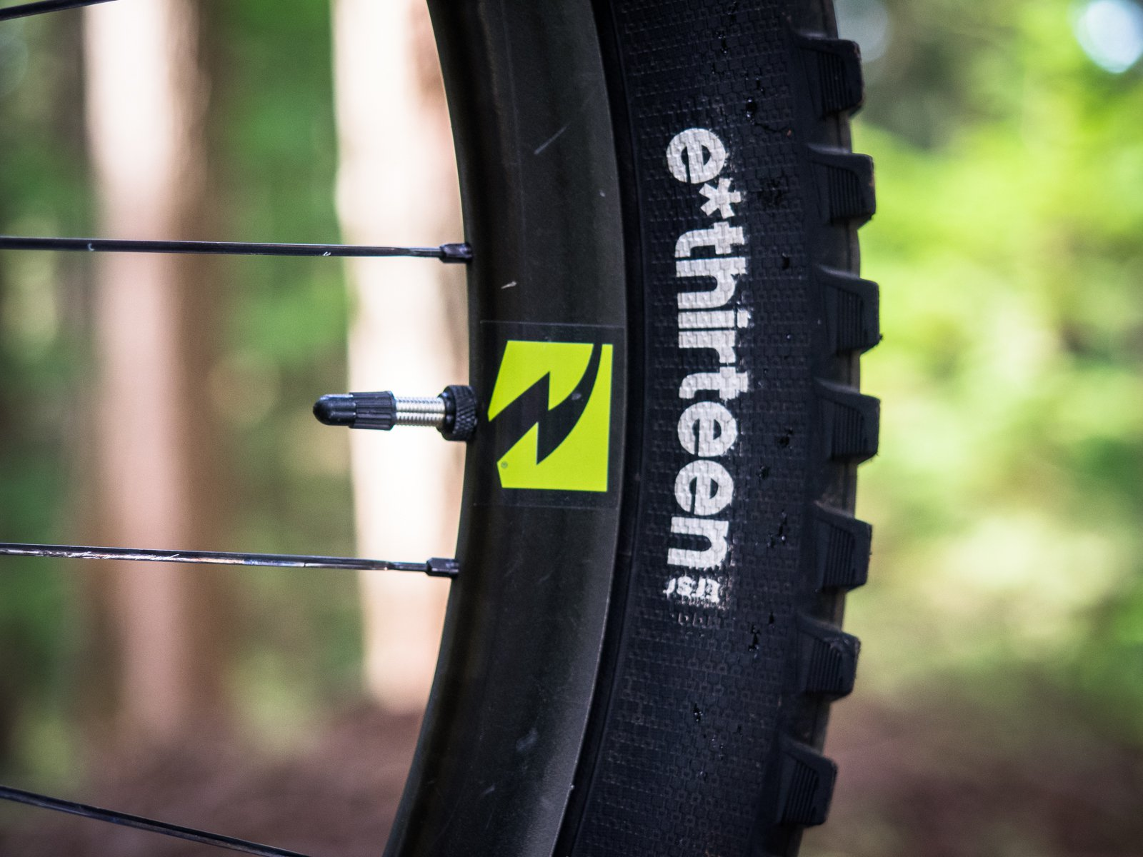 e*thirteen TRSr Tire Graphic