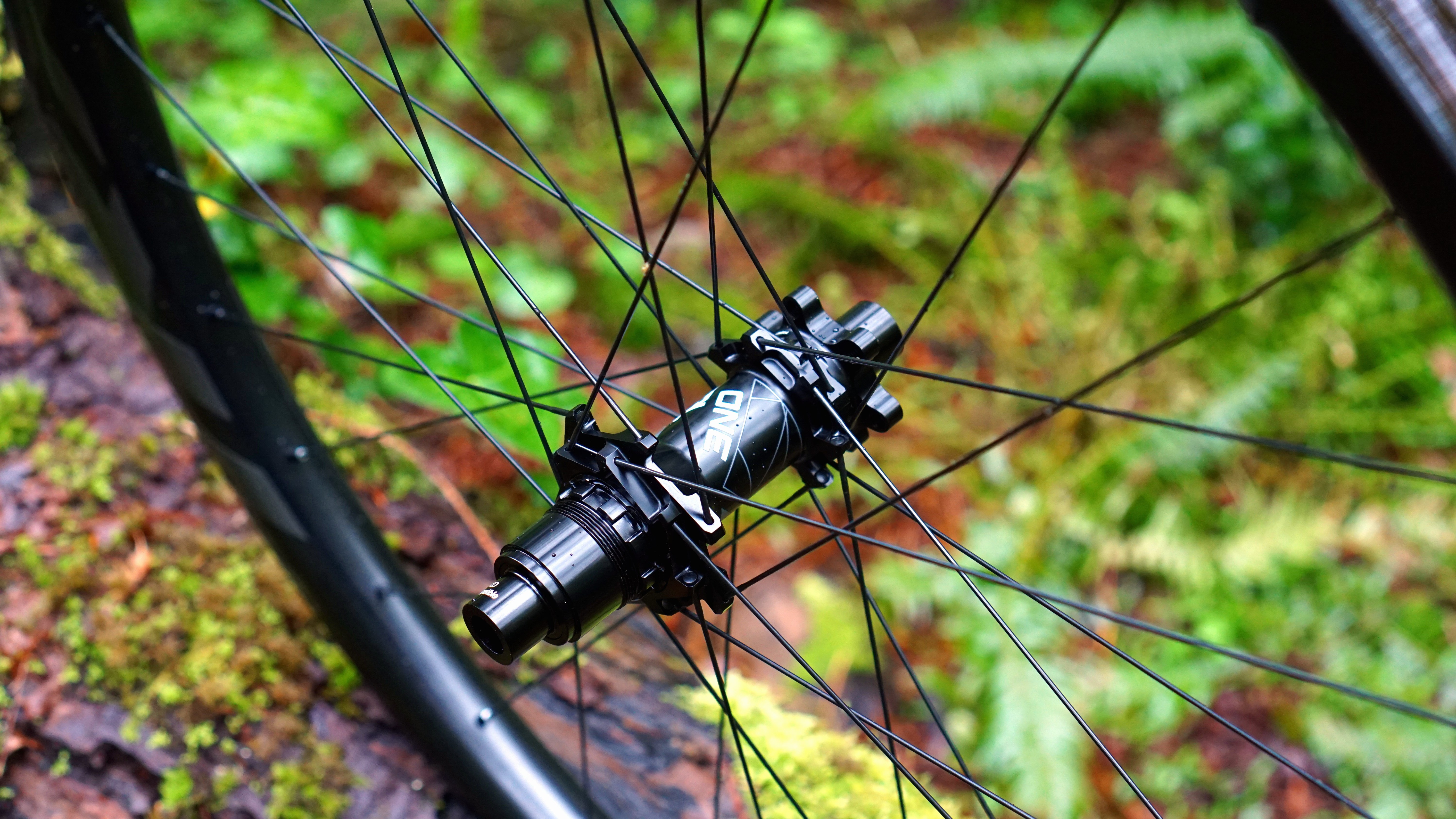 Giant_TRX0_Rear_Hub.JPG