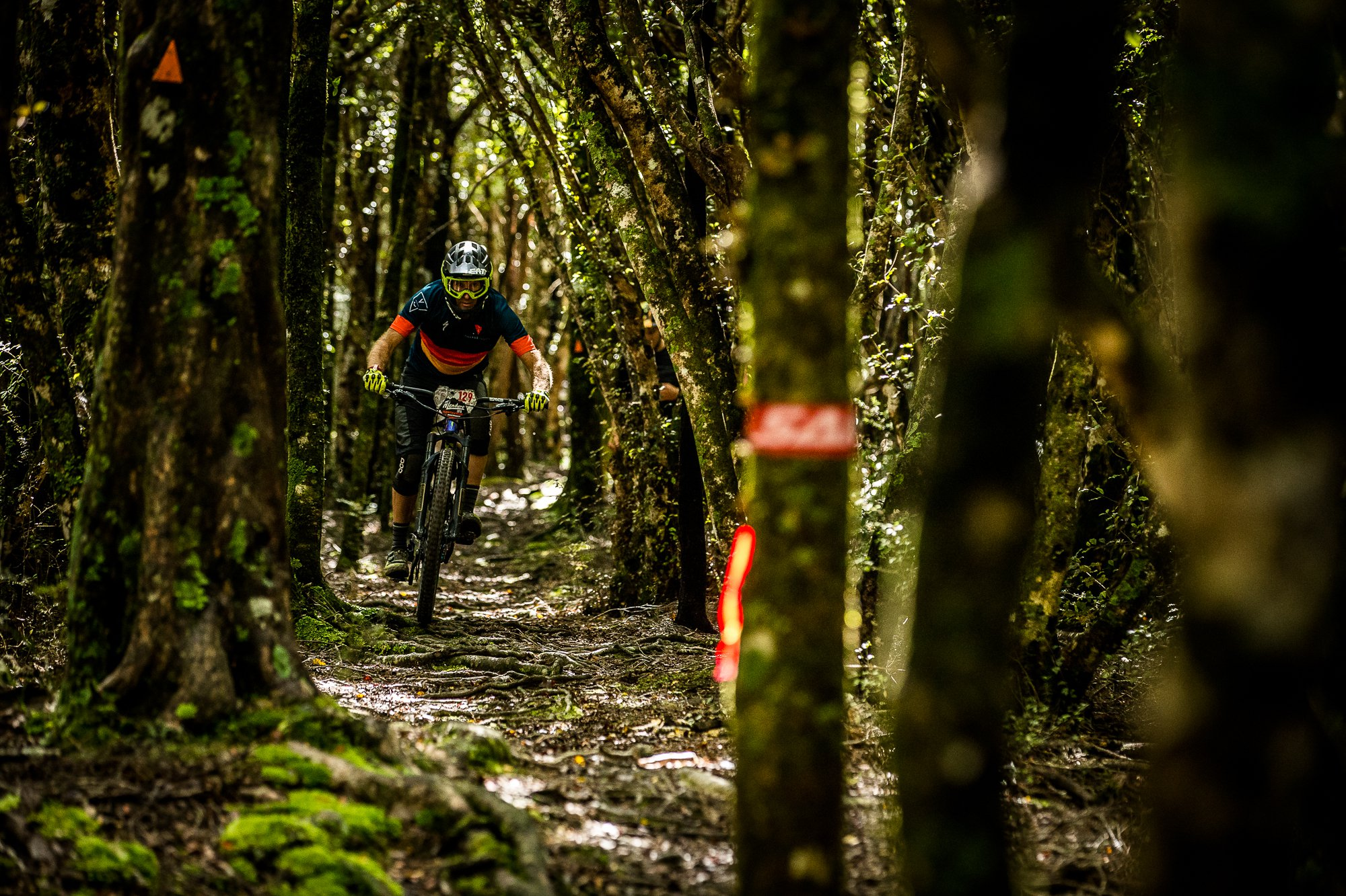 NZ Enduro Day 1 Beech Forest