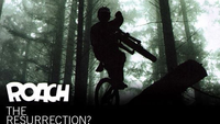 Roach Cruiser ride header
