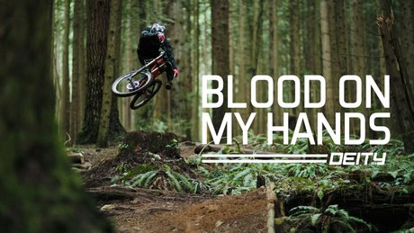 Bas Van Steenbergen Blood Hands