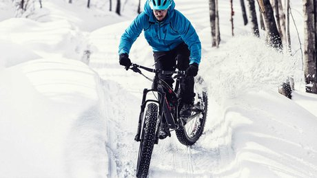 Fat bike duallie