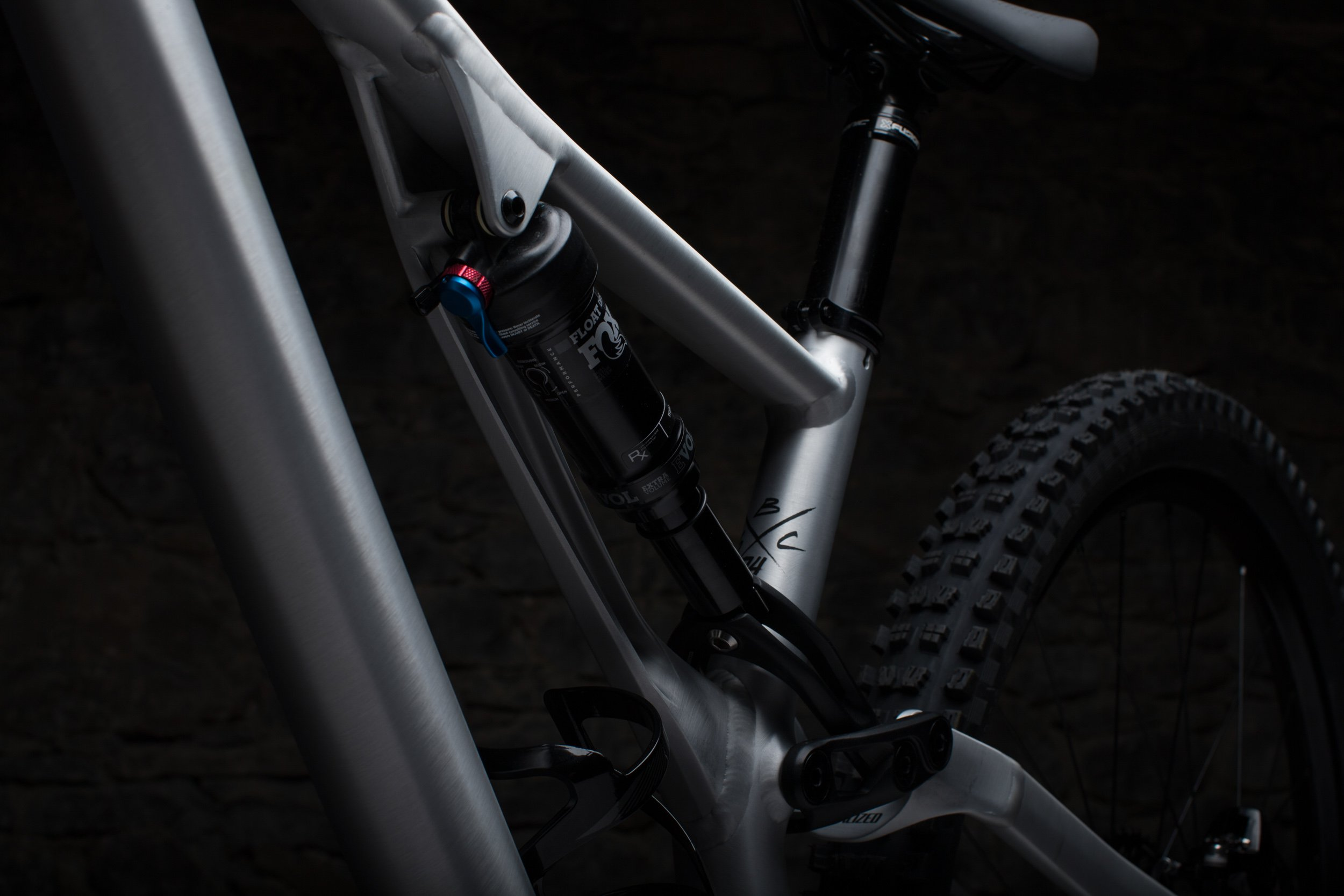 Specialized Stumpjumper sidearm detail, non-driveside