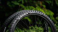 michelin-wild-enduro-tires-ajbarlas-03757.jpg