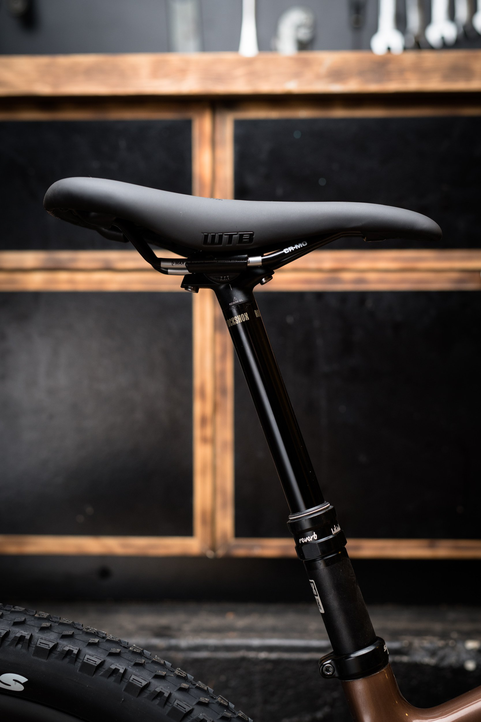 nsmb2019-gearreview-firstlook-santacruz-chameleon-7410.jpg