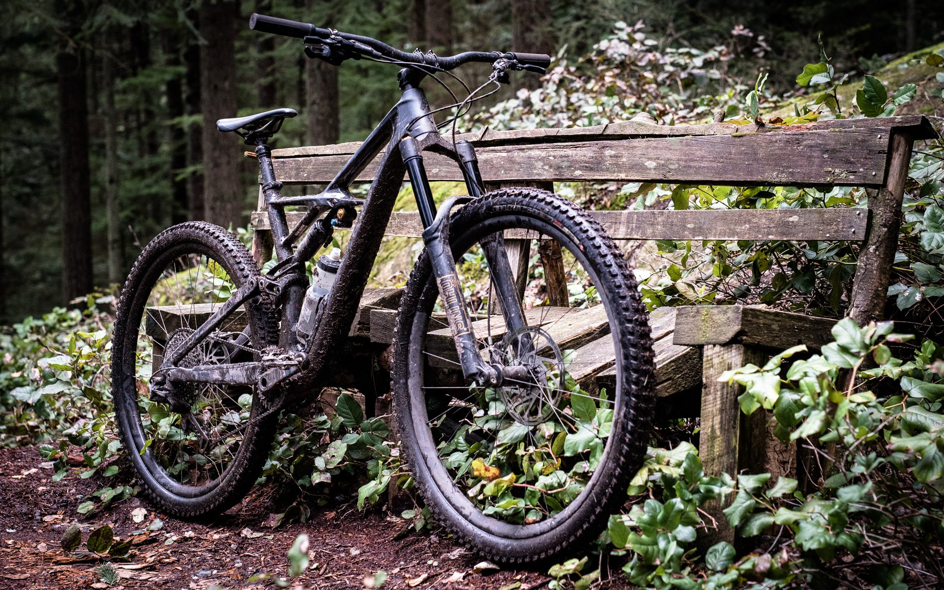 nsmb_2017_geareview_specialized_enduro29_PerrySchebel-7870.jpg
