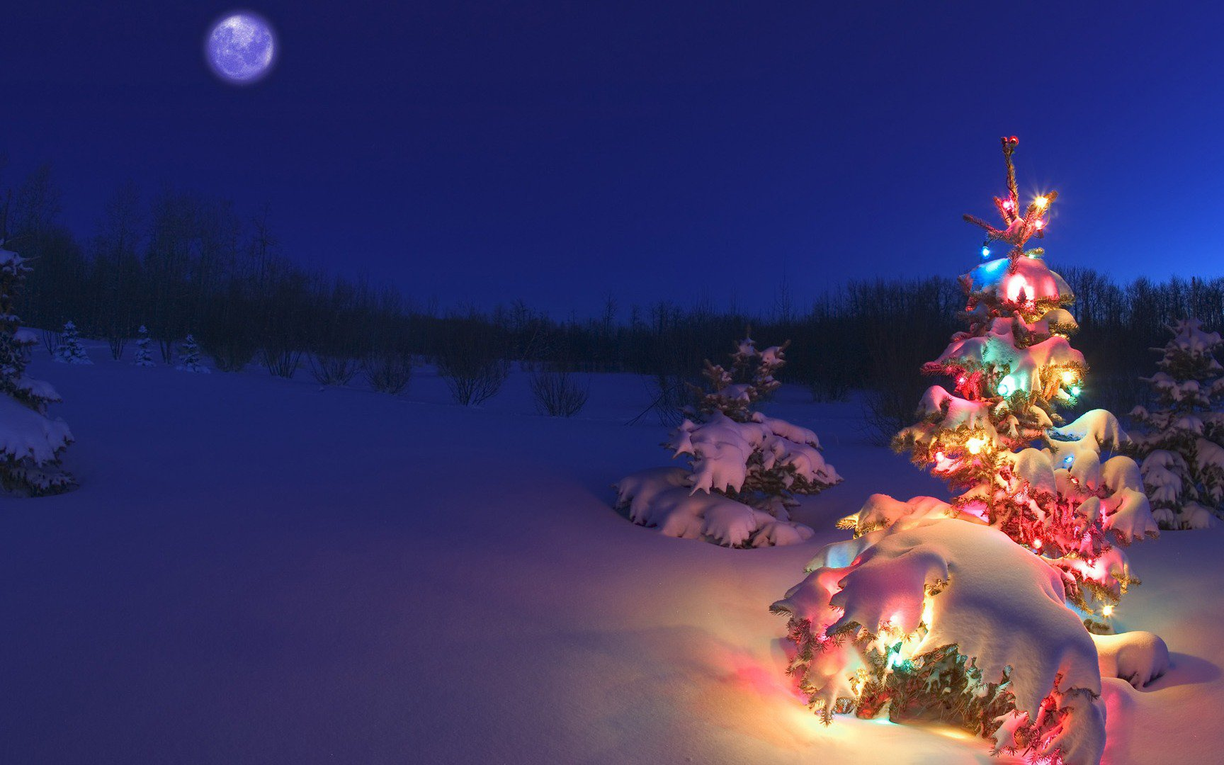 snow-covered_christmas_tree_lights_wallpaper_1920x1080.jpg