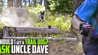 trail_dog_ask_uncle_dave_banner.jpg