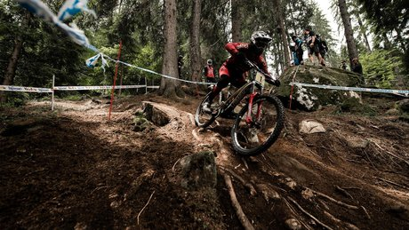 Val di Sole World Cup DH Finals 2018
