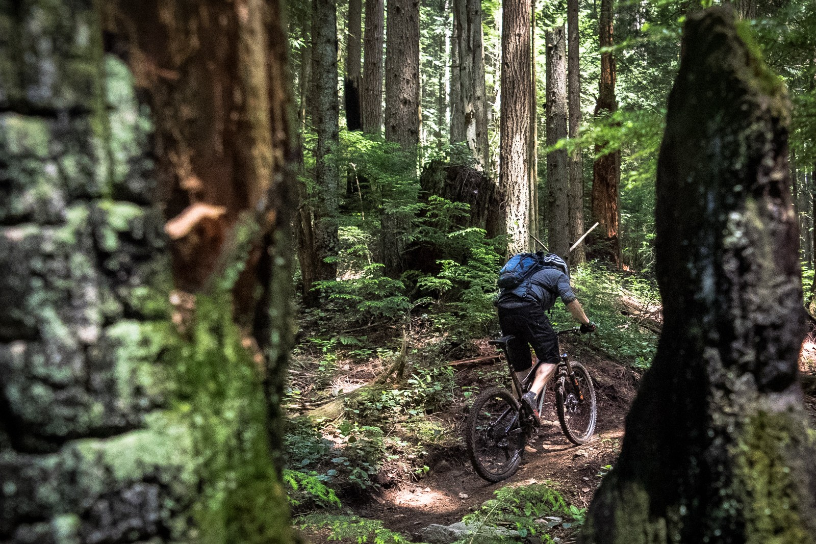 Rider: Andrew Major | Location: Mount Fromme, BC | Trail: Pipeline
