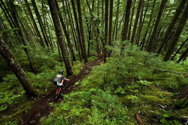 The valley trails surrounding Whistlers Bike Park are often overlooked. Maybe at some point you promised yourself you'd hike around and experience them but became caught up in the bike park.