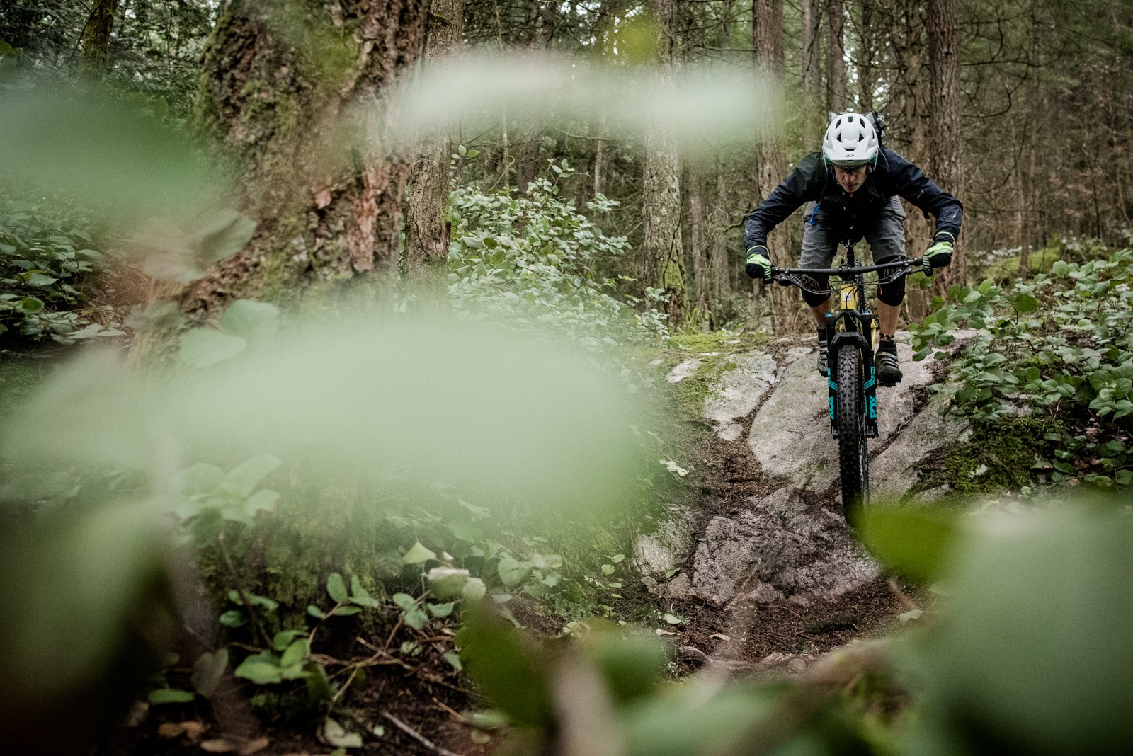 Rider: Cam McRae | Location: Cypress | Trail: Upper Tall Can