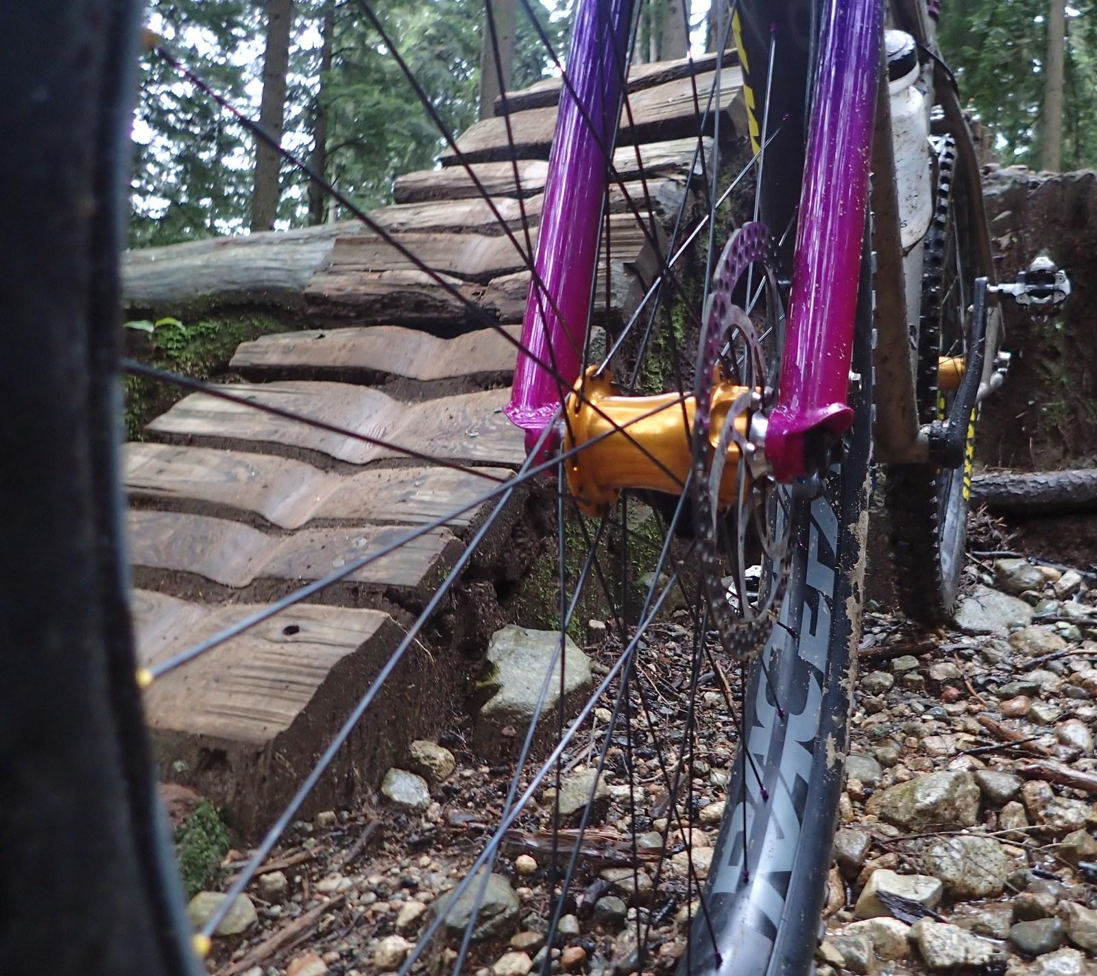 You Should Ride a Rigid Fork