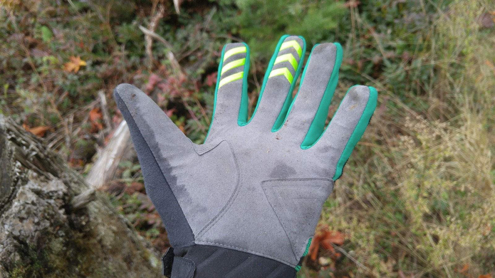 sealskinz_glove_2
